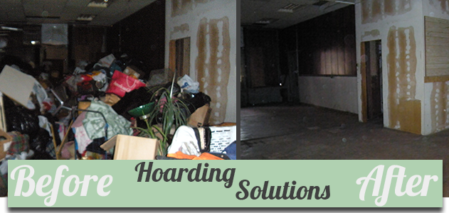 organizing solutions chicago